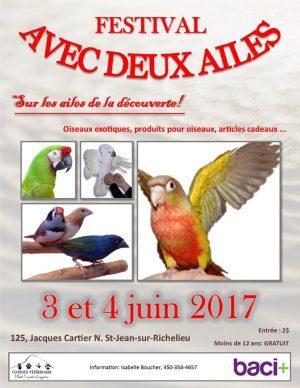 Affiche festival avec deux ailes 2017